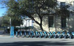 Blue Bikes Nola