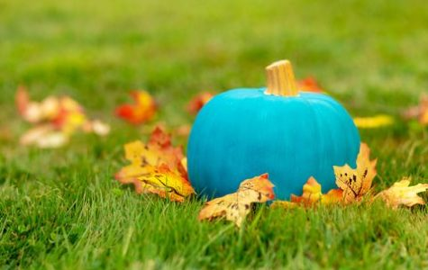The Teal Pumpkin