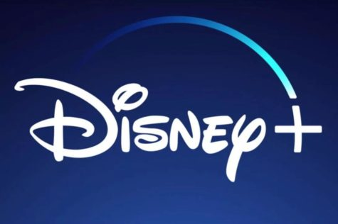 Review of Disney Plus: You
