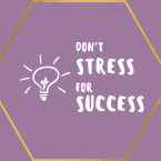 Don't Stress For Success Logo Image